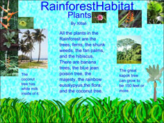 sample of one student page in the habitats project