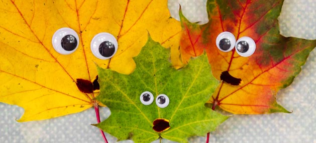 image of leaves with eyes