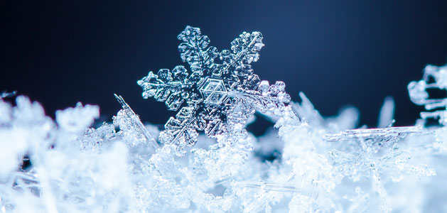 image of snowflake crystals