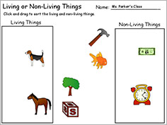 Living or Non Living Things
