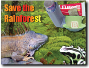 Design a Rainforest Postcard Sample